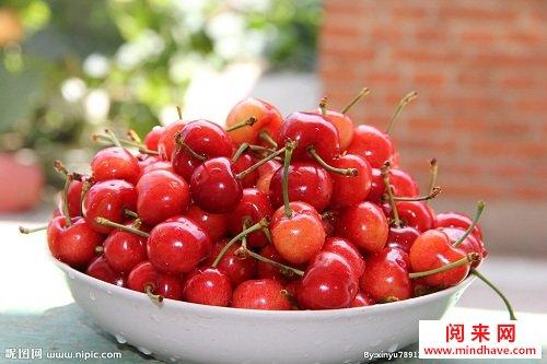 水果樱桃可爱图片